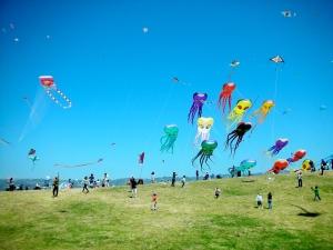 Yes...that *is* a lot of kites!